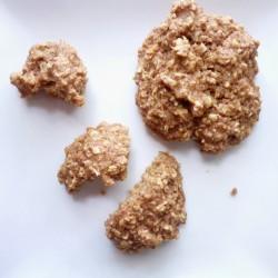 gluten free apple spice oatmeal cookies 4